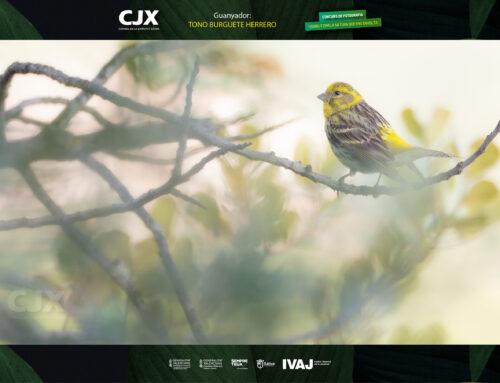 """El CJX anuncia el guanyador del Concurs de Fotografia """"Visibilitzem la Natura que ens Envolta"""""""